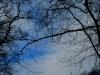 Foto: A.Twachtmann